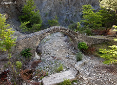 Kryoneri (kzappaster) Tags: bridge river olympus greece ft e3 zuiko 43 stonebridge zd 1454mm konitsa sarantaporos kryoneri hepirus molista