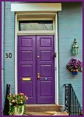 Purple Door (Mike Procario) Tags: flowers photoaday frederickmd topazadjust
