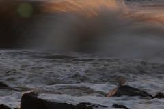Sunset Waves (TempusVolat) Tags: camera sunset sea seascape slr beach strand digital speed canon geotagged eos seaside interesting sand rocks flickr waves slow image picture wave spray foam shutter getty dslr gw canoneos gareth digitalslr tempus 60d canon60d volat canoneos60d eos60d wonfor mrmorodo garethwonfor tempusvolat