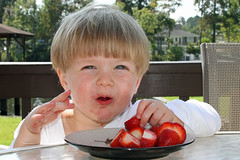 Excited over his strawberries (babyfella2007) Tags: pictures old family school boy people house jason man tree beach sc nature boys water face pine fruit breakfast mouth bug river carson children outside monkey pier dock strawberry day child photos eating grant labor south waldorf young michelle rope eat taylor carolina timeline myrtle beaufort 2012 ridgeland socastee batesburg