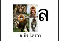 ล ลิง ไต่ราว