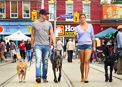 we are family (Keith.CA) Tags: city family woman toronto ontario canada man dogs festival nikon couple candid tracks streetphotography nikkor crowds cabbagetown blogto cabbagetownfestival 1685mm d7000