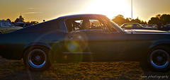 Mustang Sally (lyon photography) Tags: sunset shadow sunlight car evening westsussex unitedkingdom circles profile sally mustang womandriver falir jameslyonphotography goodwoodrevival140912 goodwoodchicester