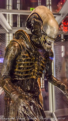 Alien (dschultz742) Tags: 07222016 d810 seattle emp nikon nikko nikon28300mmf3556gedvrafs alien