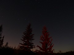 Dipper's Cradle (brenGT2) Tags: edmonton alberta perseids meteor shower night sky stars constellation trees rural dark big dipper cradle