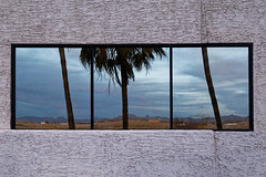 Mirage (Guillaume DELEBARRE (Guigui-Lille)) Tags: window reflet reflection palmier palm usa america nevada laughlin canon 6d tamron2470f28 glass concrete bton sky dsert desert palmiers abstract abstrait abstraction