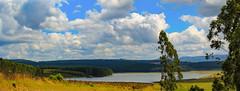 IMG_3075-Pano (79prometeo) Tags: sudafrica krugerpark kruger africa travel manyeleti landscape
