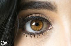 Macro Eyes Photography_04 (georgenewstylegns) Tags: eyes macro closeup beautifuleyes mujer ojos gente colormiel cafs brown