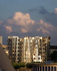 Gehry-Bauten-3 (schmitzcoesfeld) Tags: gehry düsseldorf hafen