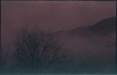 (bensn) Tags: contax s2 carl zeiss 50mm f14 film superia 200 japan nagano mountains tree night fog mist dark