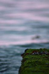 Blurred water (MarkG_Photography) Tags: dof groyne depth sea ocean