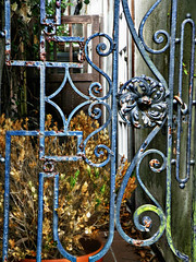 Passages (Chris C. Crowley) Tags: passages wroughtirongate gateinstaugustine staugustineflorida old weathered rusty algae leaves plants doors building architecture scrollwork
