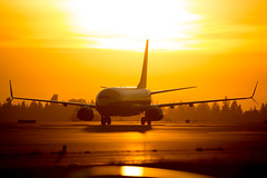 2016_08_20 KSEA stock-2 (photoJDL) Tags: 737 alaskaairlines alaskaairlines737 boeing737 jdlmultimedia jeremydwyerlindgren ksea seatacairport seattle seattletacomainternationalairport aircraft airplane aviation sunset