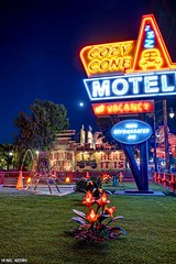 At the Cone... (Ring of Fire Hot Sauce 1) Tags: disneycaliforniaadventure carsland cozycone motel neon