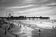 'Sunny Blackpool'....[Explore] (Taken-By-Me) Tags: takenbyme nikon d750 black blackpool beach white blackandwhite monochrome sun sea sand sky clouds people holiday vacation break lancashire lancs seagull pier big wheel bigwheel