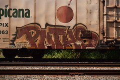 PUTAS (TheGraffitiHunters) Tags: graffiti graff spray paint street art colorful freight train tracks benching benched boxcar reefer putas