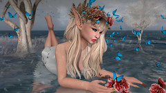 Butterflies and Flowers (Anita Armendaiz) Tags: bentbox blues butterfly catwa head ccdesign cosmopolitan elf fantasy flower kustom9 life nanika persefona second shiny shabby the secret affair third eye ys