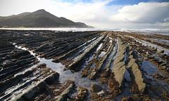 (Paul J's) Tags: wairarapa landscape coastal pacificocean rockformation sandybay mataikonaroad