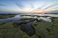 Tyrrhenian sunset (17133) (Danilo Antonini (Pescarese)) Tags: paesaggio panorama landscape natura nature livorno toscana tuscany italia italy vacanza holiday viaggio travel turismo touring pescarese regionetoscana daniloantoniniphotographer metaturistica attrazioneturistica touristdestination touristattraction relax vacanze holidays weekend tramonto sunset mare sea scogli rocks mediterraneo seascape scoglio rock marmediterraneo coast stones tirreno martirreno tyrrhenian tyrrheniansea