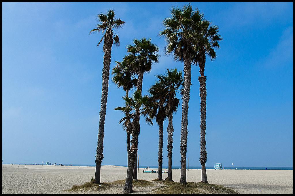Santa Monica Beach - Santa Monica Beach