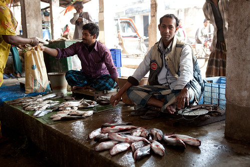 Fish market in Khulna. Photo by Mike Lusmore/Duckrabbit, 2012.