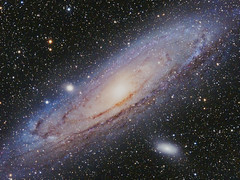 """M31 Andromeda Galaxy """"First Light with TMB92SS"""" (Terry Hancock www.downunderobservatory.com) Tags: camera sky monochrome night stars photography mono pier back backyard fotografie photos thomas space great shed science images astro apo m observatory telescope andromeda galaxy m31 astronomy imaging 12 messier ccd universe ngc224 f8 cosmos technologies paramount luminance the lodestar teleskop astronomie byo oiii refractor deepsky m32 f55 m110 astrograph autoguider starlightxpress astrotech ritcheychrétien Astrometrydotnet:version=14400 tmb92ss mks4000 qhy9m gt110s Astrometrydotnet:id=alpha20120847345994"""