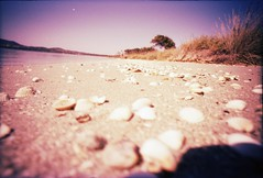 traces of life on Mars (Fl:ckrnauta) Tags: mars color film 35mm lomo xpro lomography x 64 nasa tungsten curiosity lcw c41 pellicola lifeonmars postatomic lcwide lomolcw lomolcwide lomographycolortungsten64