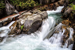 Paradise River 4 (chasingthelight10) Tags: travel nature photography landscapes whitewater events places rivers mountrainiernationalpark washingtonstate wildernesstrails paradiseriver rocksandtrees upperparadisevalley