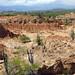 Desierto de la Tatacoa (13)