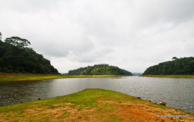 Walk Into Water At Periyar Reservoir At Periyar Tiger Reserve, Thekkady, Kerala