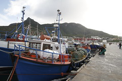 Hout Bay, Cape Town Western Cape, South Africa. (World Bank Photo Collection) Tags: ocean africa sea seagulls fish beach nature ecology southafrica fishing fishermen profile conservation capetown aerial seafood coastline worldbank biodiversity marinelife westerncape hake