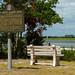 Jekyll Island Scenery 1