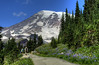Taking a hike in Paradise (Deby Dixon) Tags: travel mountain tourism nature outdoors volcano washington nationalpark paradise nps hiking adventure trail glaciers wildflowers hikers deby allrightsreserved 2012 mtrainiernationalpark debydixon debydixonphotography visitrainier