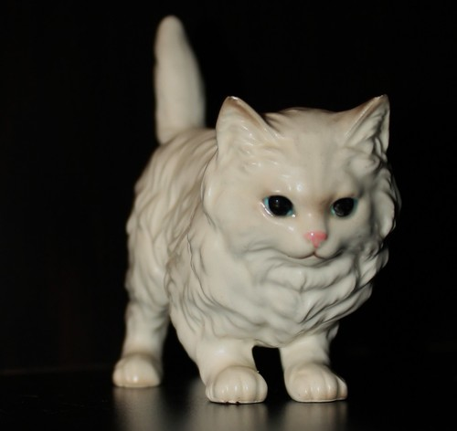 standing white kitty