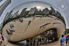 Jelly Belly (spocktography.) Tags: travel sculpture chicago reflection illinois midwest il fisheye 15mm hdr canon15mmf28 workventures hdrcamera canon5dmarkiii matthewpock