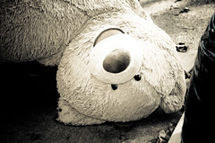 Teddy's Dead II (Surreal-Journey) Tags: ted toys teddy teddybear stuffedanimal adolescence urbanna islandofmisfittoys discardedtoys