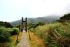 吊橋 (Jungyang Huang (BlueHawaii)) Tags: canon 1022 pictureperfect 60d theenchantedcarousel