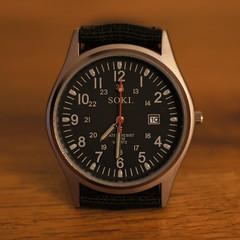 254/366 2012 Tempus Fugit XIII (Chris D. Jones) Tags: field 50mm ebay dof sony watch timepiece alpha cheap depth soki a580 sonyalphalearningcenter