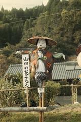 山田の花子ちゃん