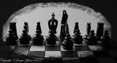 A move ahead (Jacquie Akroyd Photography) Tags: uk portrait woman game female self nikon pieces board chess sp adobe piece d7000 nikond7000 rattesalat jacquiegibson jacquieakroydphotography jacquieakroyd