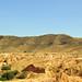 Tunisia-3582 - More Matmata Scenery