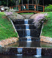 Fountain of Youth (osvaldoeaf) Tags: flowers brazil people nature water fountain brasil children spring reflexions goinia gois