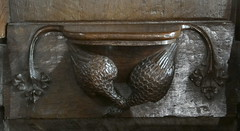 Fairford, Gloucestershire (Sheepdog Rex) Tags: misericords stmaryschurch fairford hawks ducks