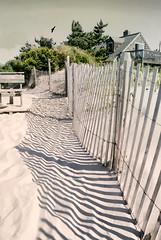 Summer Pallet (floralgal) Tags: lbi longbeachisland newjerseylandscape beachhaven summeronlbi zebrastripes fenceshadows sandandsurf sanddunes southernnewjersey jerseyshore