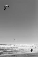 *** (Misha Sokolnikov) Tags: bigsur ca california usa america kite kitesurfing surfing beach ocean pacificocean sea wind leica leicamonochrom leicamm 50mm aposummicron blackandwhite blanconoir blackwhitephotos blancoynegro bw mono monochrom monochrome