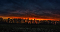Fiery Winter Sky (Wilkof Photography) Tags: taneytown maryland md carrollcounty fierysky redsky autumn backroads canont4i canon countryside cloudy cloudcover dark dusk evening farmland field horizon hillside landscape light land 18135mm 18mm lens longexposure le cpl leaves nature night overcast outside overgrown rural rustic shadow scenic skyline sky sunset sundown trees treeline winter wilkofphotography