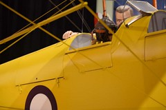 "de Havilland DH.82 Tiger Moth 44 • <a style=""font-size:0.8em;"" href=""http://www.flickr.com/photos/81723459@N04/28732051150/"" target=""_blank"">View on Flickr</a>"