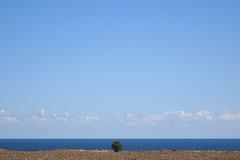 The Sea at Tuzla (AP4P0557 1PS)