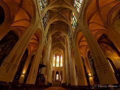 glise Saint-Gervais-Saint-Protais de Paris (thierrymasson94) Tags: glisesaintgervaissaintprotaisdeparis architecture fisheye france