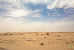 Sable blanc d'El-Oued (Ath Salem) Tags: algrie paysage tourisme dcouverte    palmeraie hobba eloued souf sable blanc sahara est irrigation palmier   coupole